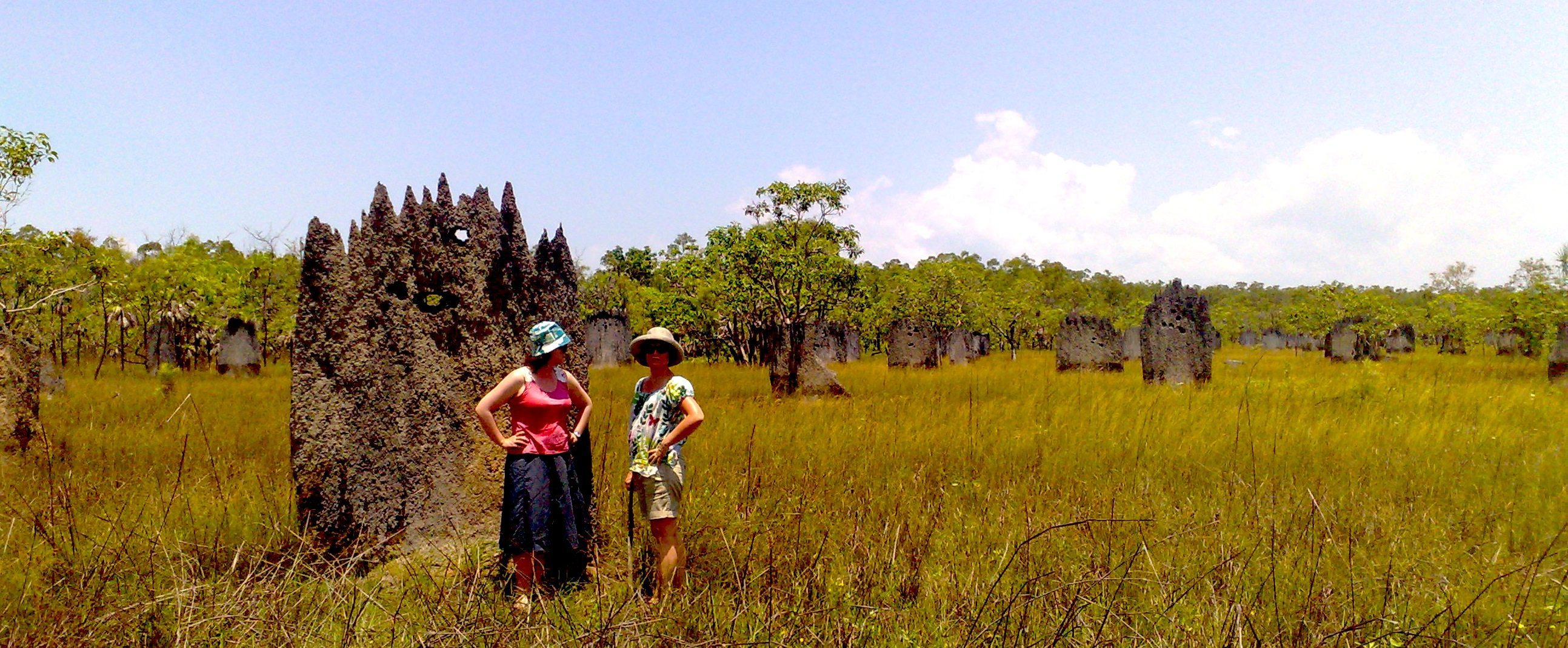 The Termite Mounds near Mandorah: under threat from Fracking