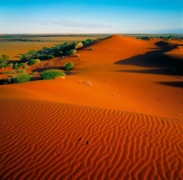 Simpson Desert, NT